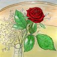 薔薇 12月