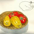 トマトと黄瓜 2006年7月