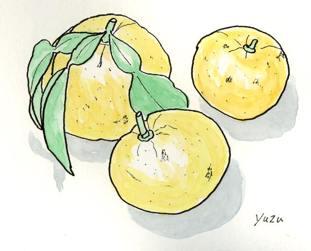 柚子 12月