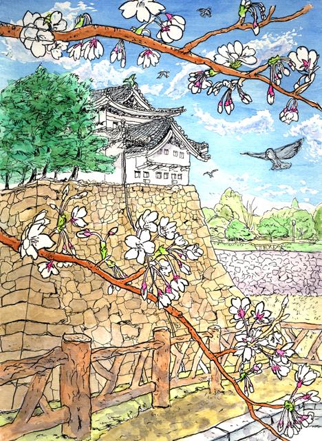 名古屋城のさくら 2007年3月