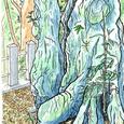 ツブラシイ 長久手町・石作神社  2006年8月