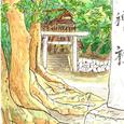 境内の樹 尾張旭市・直會神社 8月